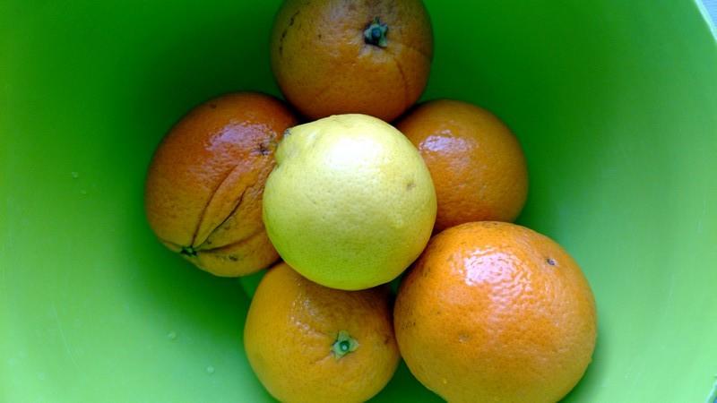 skórka pomarańczowa