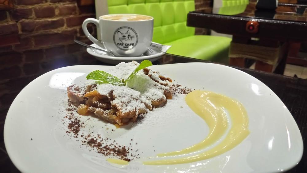 kocia kawiarnia - cat cafe - lwów