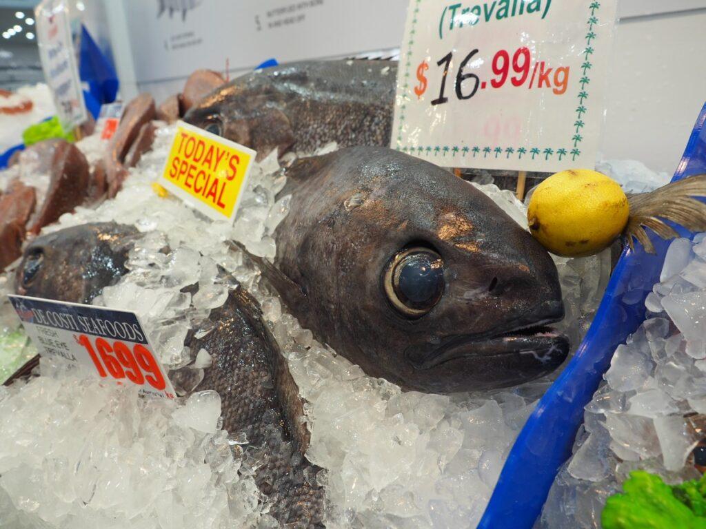 Sydney Fish Market