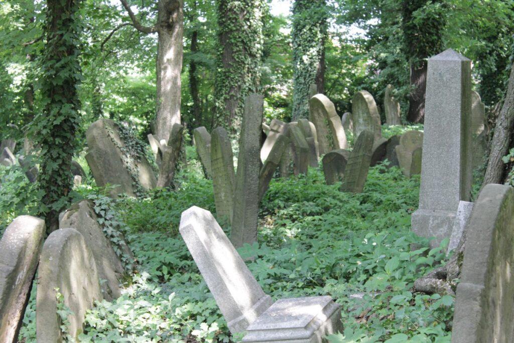 Cmentarz żydowski w Cieszynie