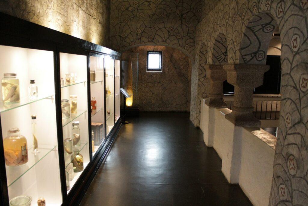 Muzeum Wielorybnictwa Sandefjord