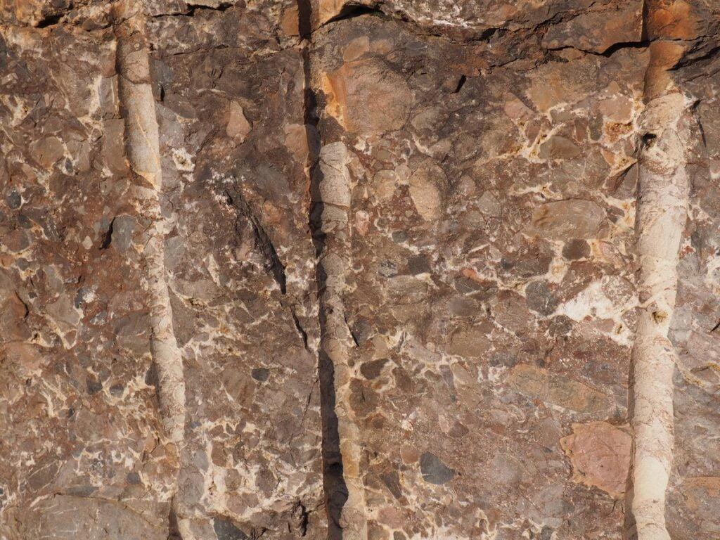 Zygmuntówka