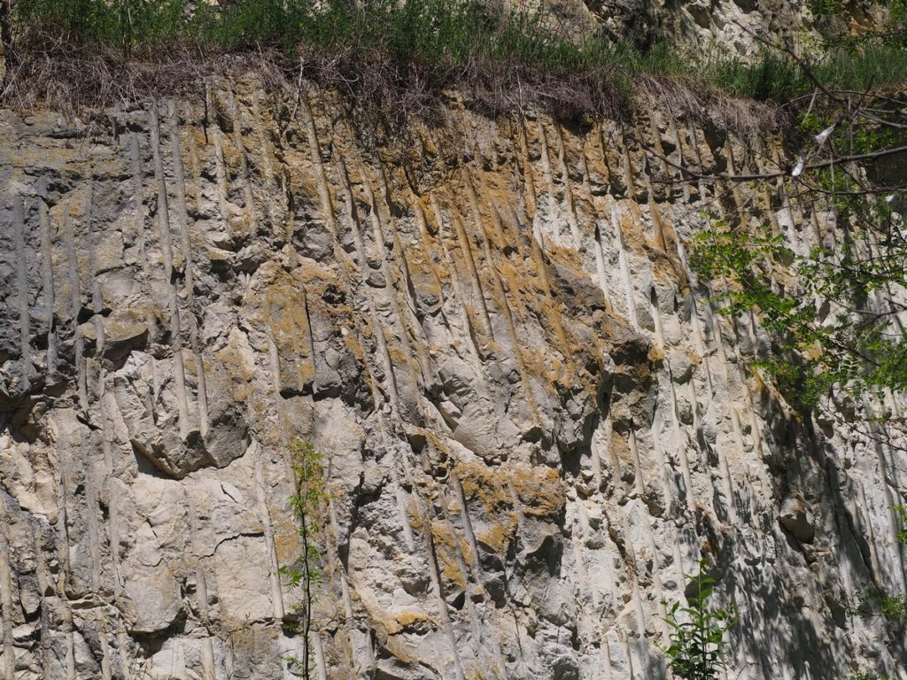 Kamieniołom w Gołuchowie
