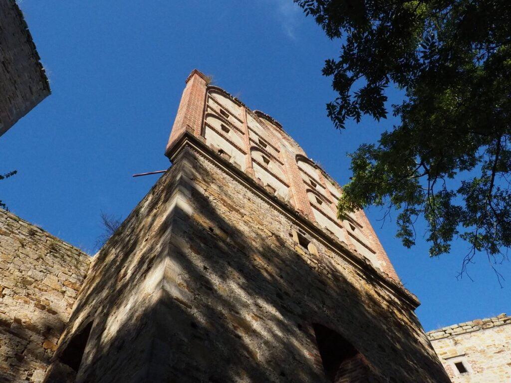 Zamek w Drzewicy